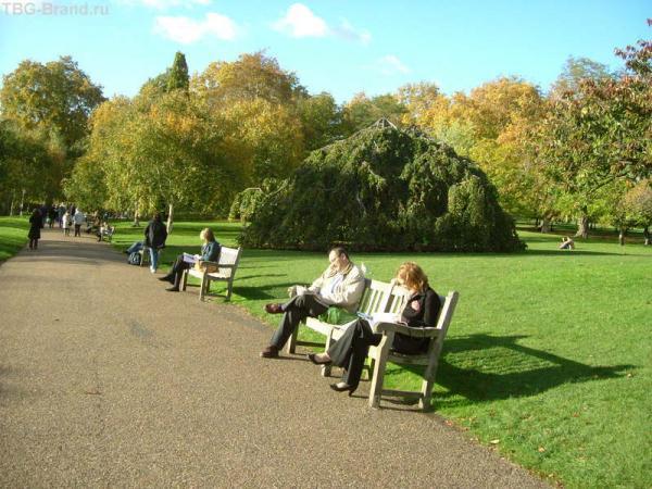 Читаем и загораем в парке.