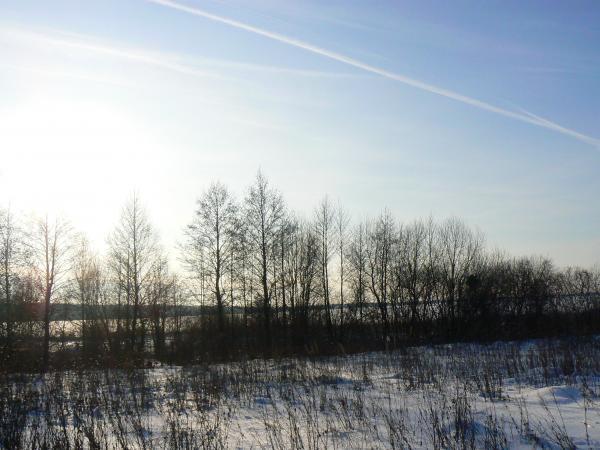 Окрестности деревни Жуковка