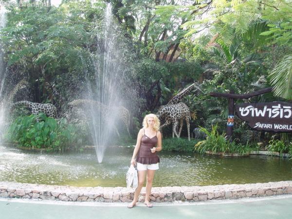 Сафари-парк (жирафы искусственные)