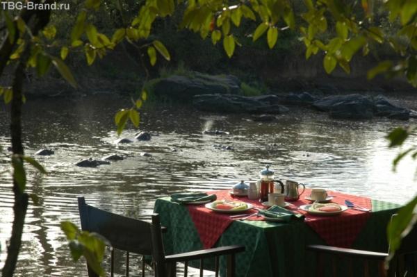 завтрак с бегемотами...