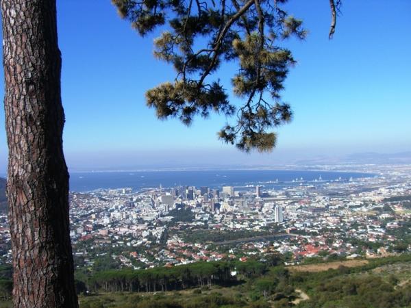 Вид на Кейптаун у подножия Столовой Горы