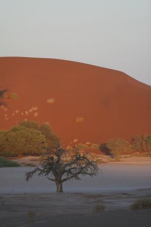 Пустыня Намиб на закате