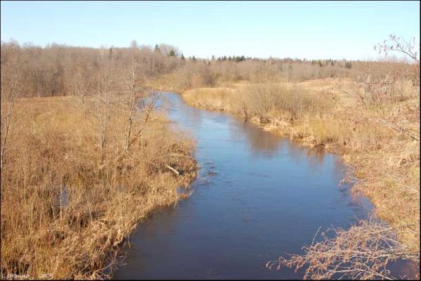 река Поведь в т.Старта