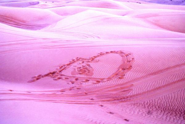 сердце пустыни