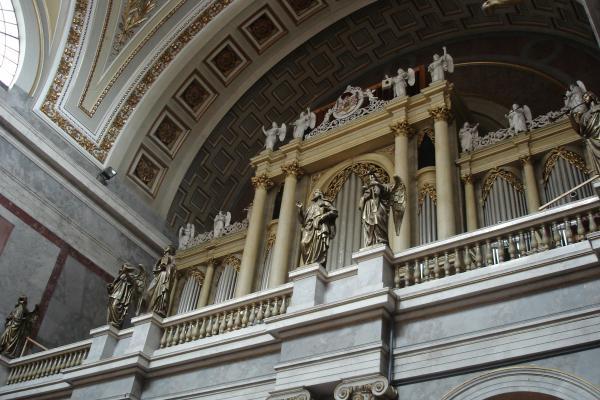 Орган базилики.