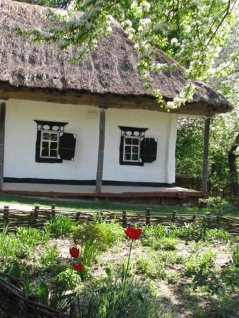 Домик в Пирогово