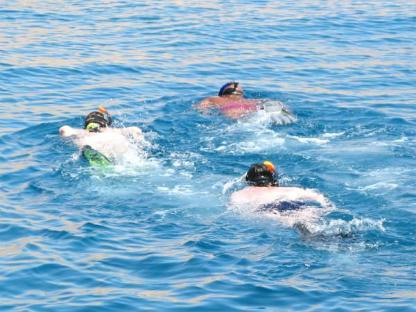 мега-снорклинг с яхты вдоль рифов )