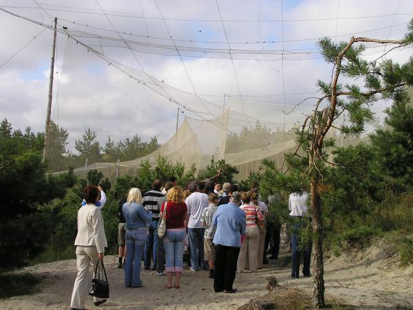 На орнитологической станции (Калининград)