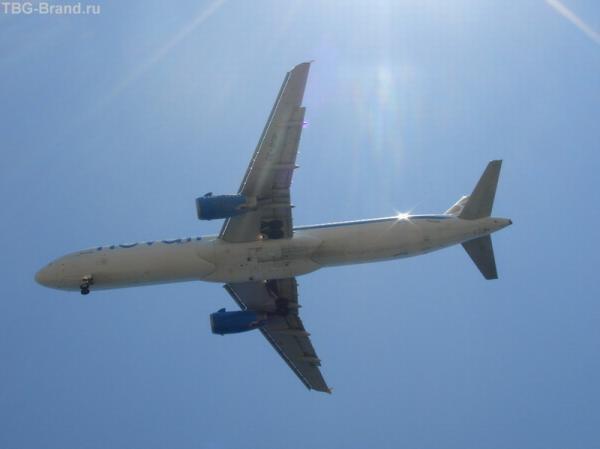 вот такие птички летают над пляжем в Камари:)