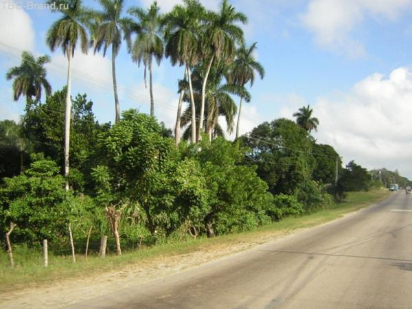 Дорога на Санта Клару