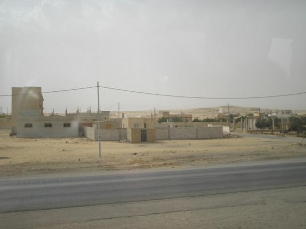 Житие продвинутых бедуинов