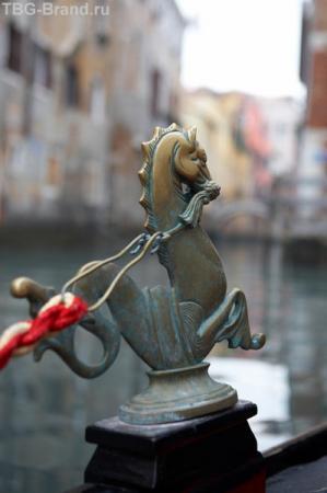 Морской конек - житель венецианской лагуны