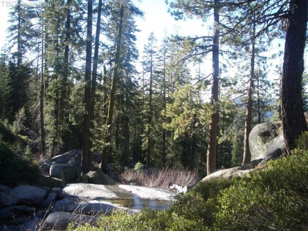 в парке Йосемити