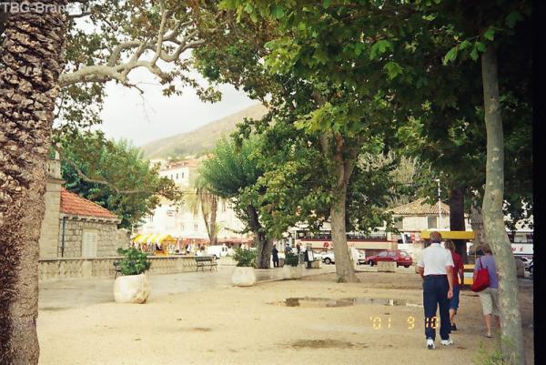 Дорога в Дубровник проходит через куротную зону