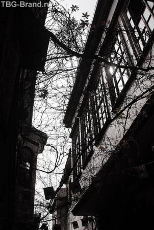 На улицах старого Дамаска