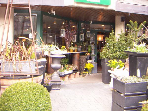 Интерлакен, цветочный магазин