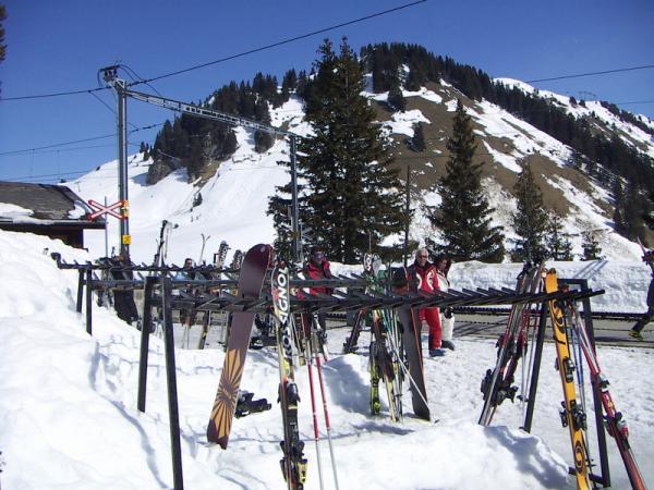 Стеллаж для лыж