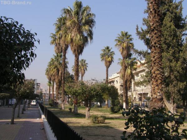 Улицы Дамаска