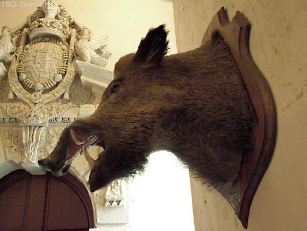 В вестибюле замка де Бриссак