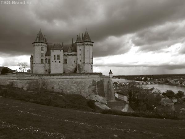 Сhâteau de Saumur