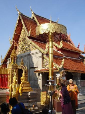 Золотые зонтики в храме