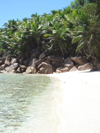 Мечта отшельника - километры безлюдных пляжей