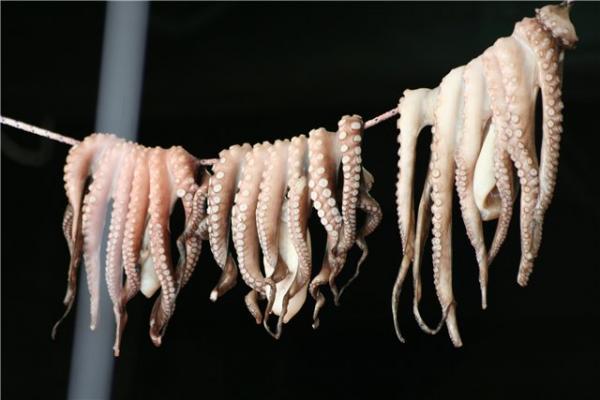 Перед приготовлением осьминоги сушатся на веревке