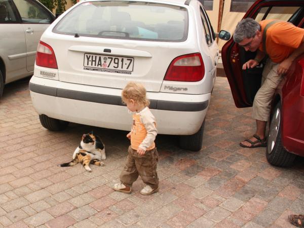 Это кошка, за которой гоняется Суслик и Папа, который гоняется за сусликом