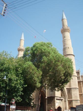 Мечеть Селимийе