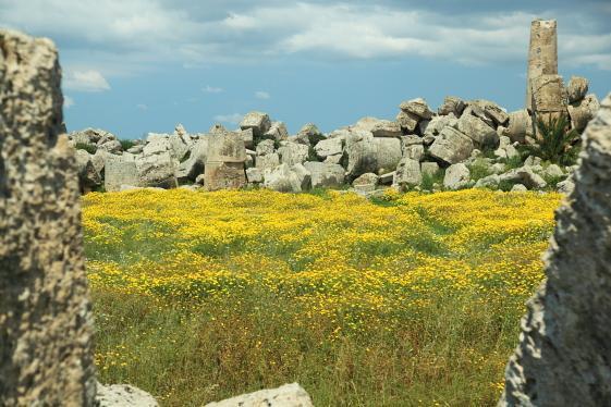 Руины храма Зевса в Селинунте