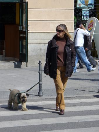 Мадрид_прохожие