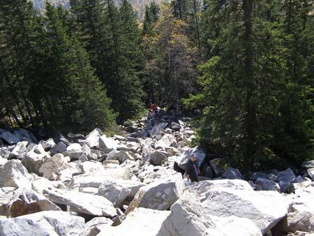 Каменные реки - кварцитовые курумы