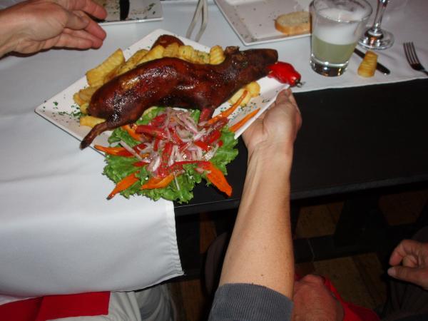 Перуанский деликатес - морская свинка