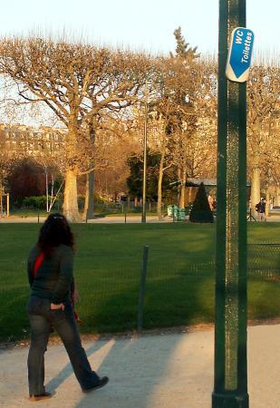 В Париже проблема не только с парковкой...
