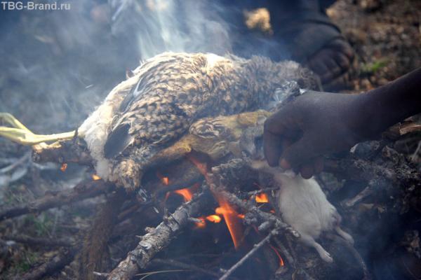 Белку и птицу в костер, чтобы опалить