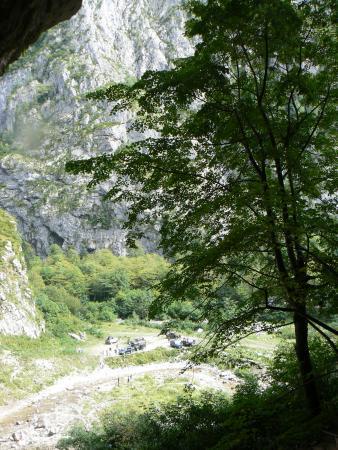 Райская Абхазия