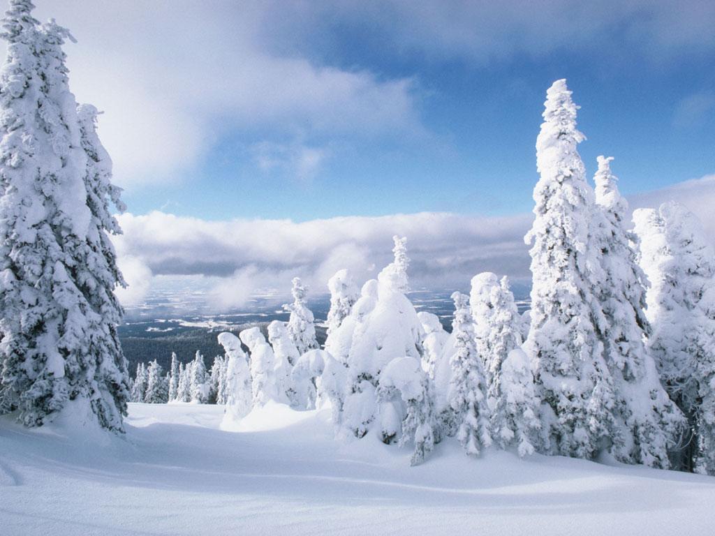 Зима зима зима на бэби ру