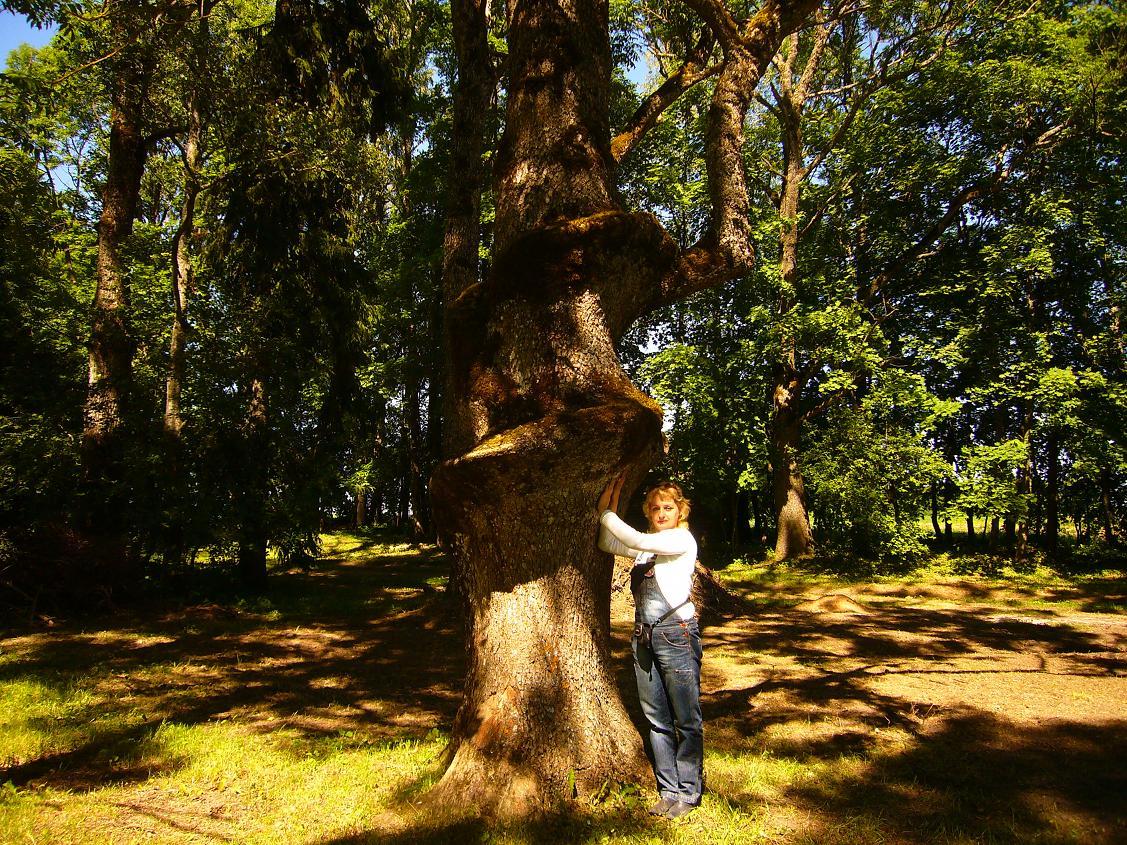 Секс на дереву 4 фотография
