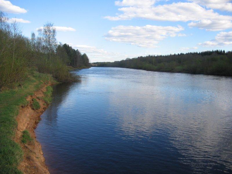 спокойная рыбалка в ленинградской области