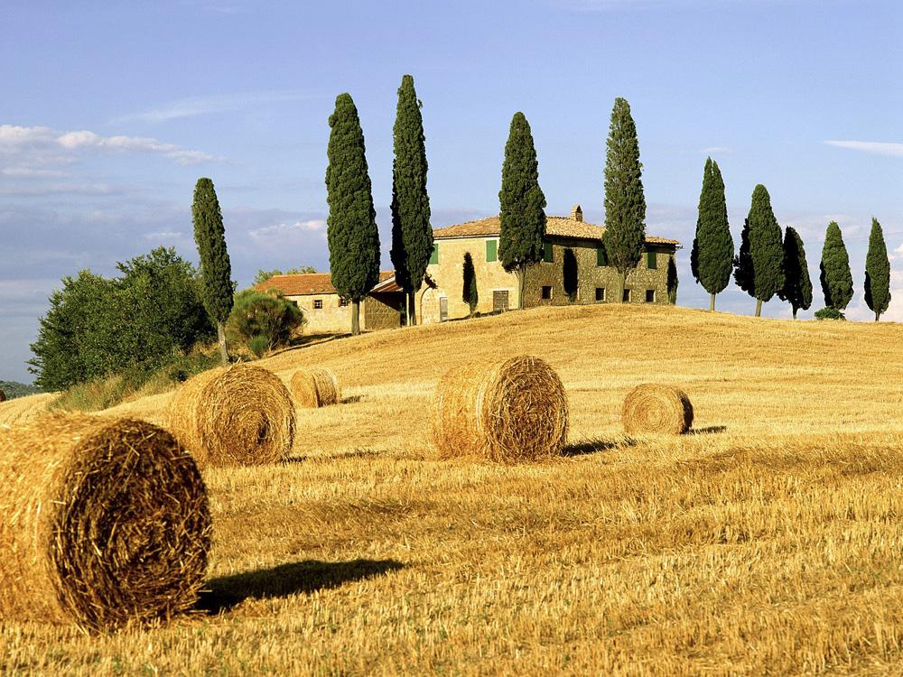 Страна вин и искусства италия тоскана
