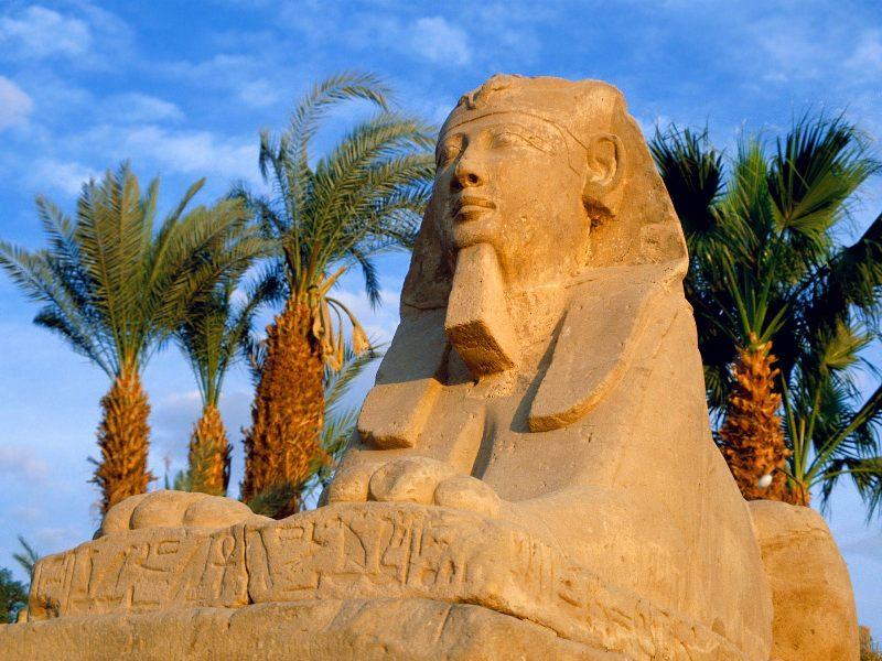 Отдых в Египте : отдых в египте
