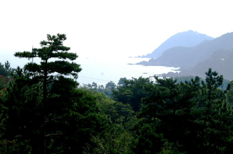 Пенистый берег, хреновый парк.