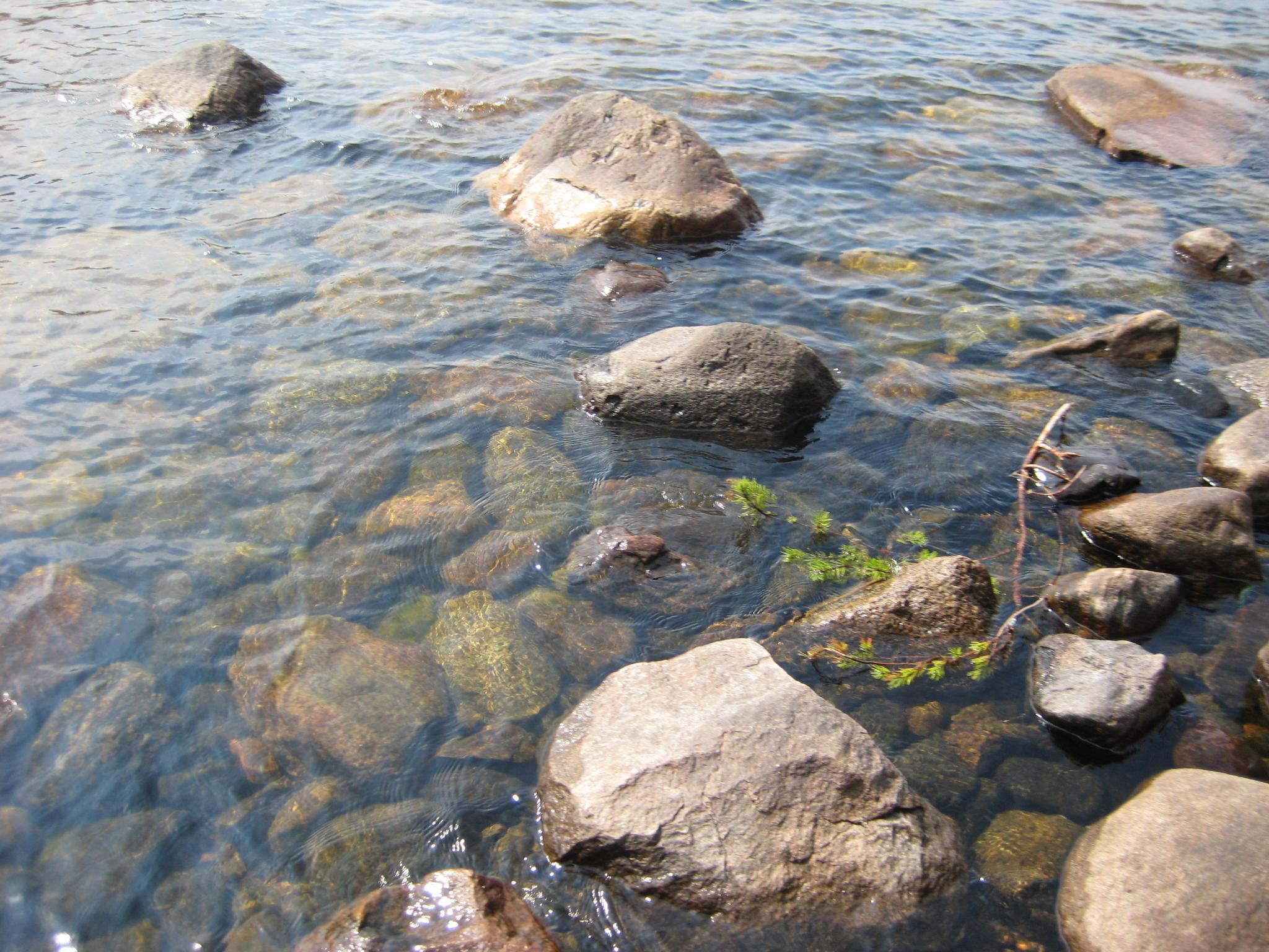 Край озер, берез и сосен.