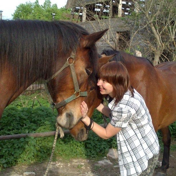 В гости к лошадкам