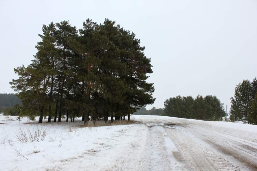 По сельским дорогам