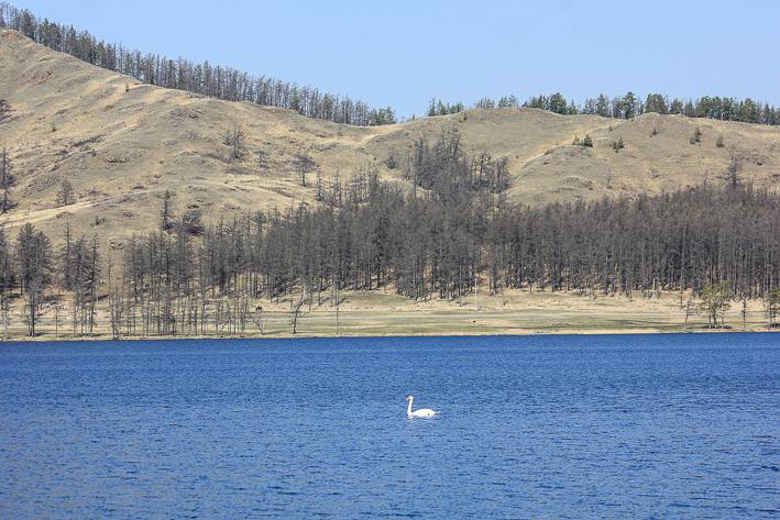 Весна в Башкирии. Озеро Калкан и окрестности.