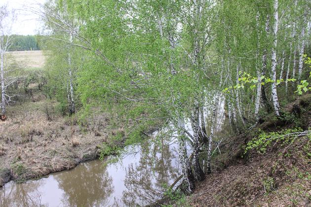 Вдоль цветущей реки...