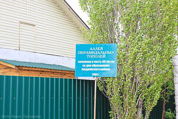 В рамках акции Туристского информационного центра
