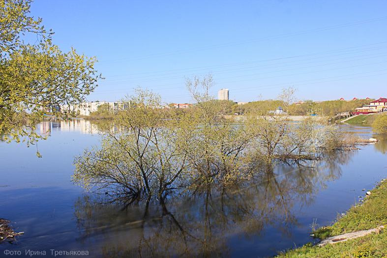 Окрестности Кургана. Половодье на реке Тобол. 30 апреля2016 год.