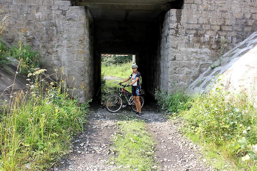 Велопрогулка по окрестностям г. Кургана. Грибы и не грибной дождь.
